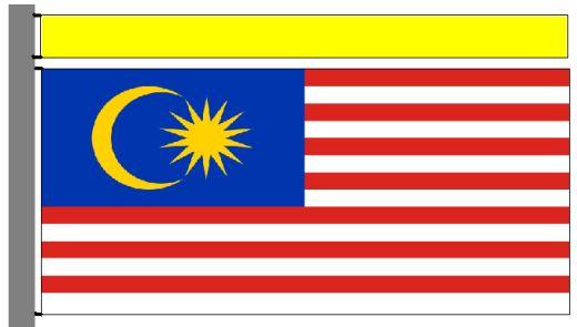 20070828-malaysiayellow.jpg